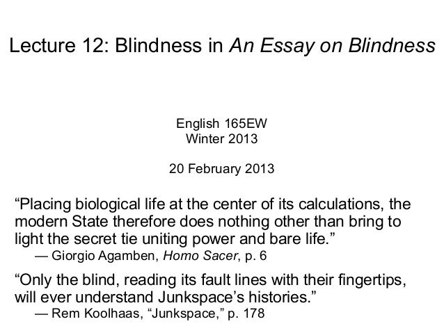 Essay on blindness